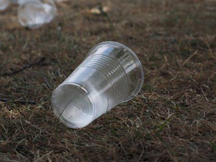 A Lidl 2020-tól nem értékesít egyszer használatos műanyagterméket