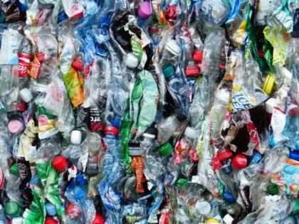 Palack-újrahasznosítási rekord született