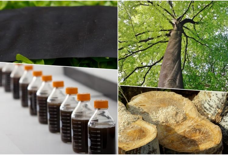 műanyag fa környezetvédelem