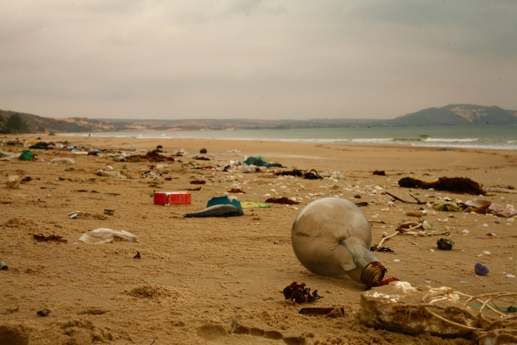 szennyezett part